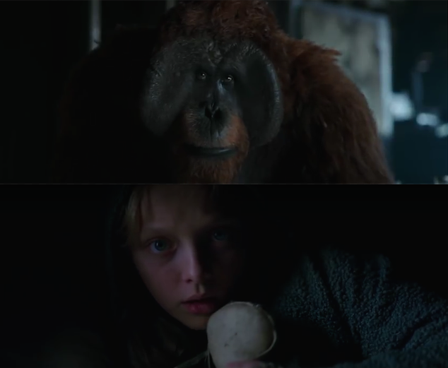 warapes-review3.png